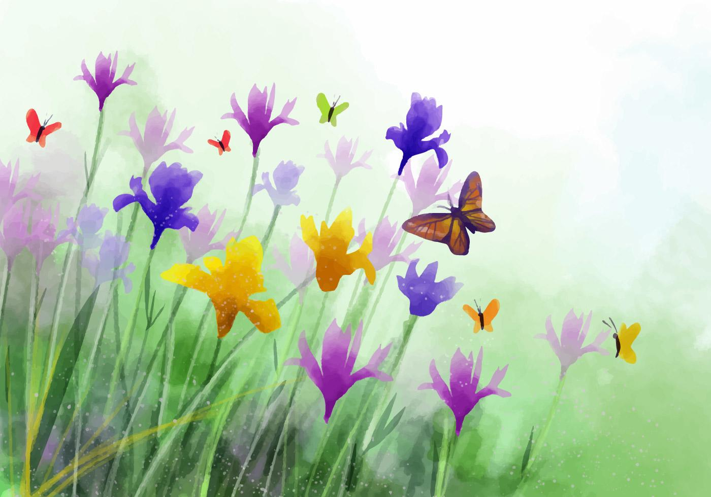 watercolor of irises and butterflies